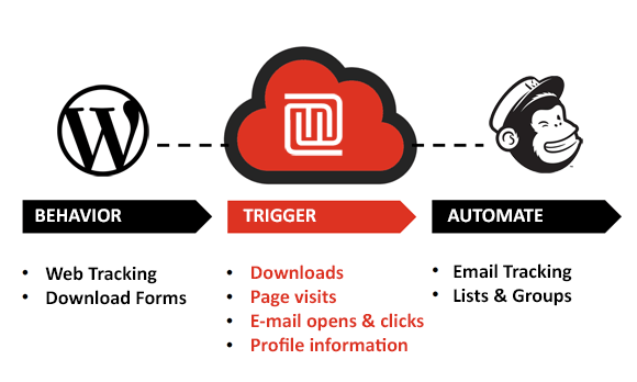 Trigger automation workflows in Mailchimp from WordPress activitiy